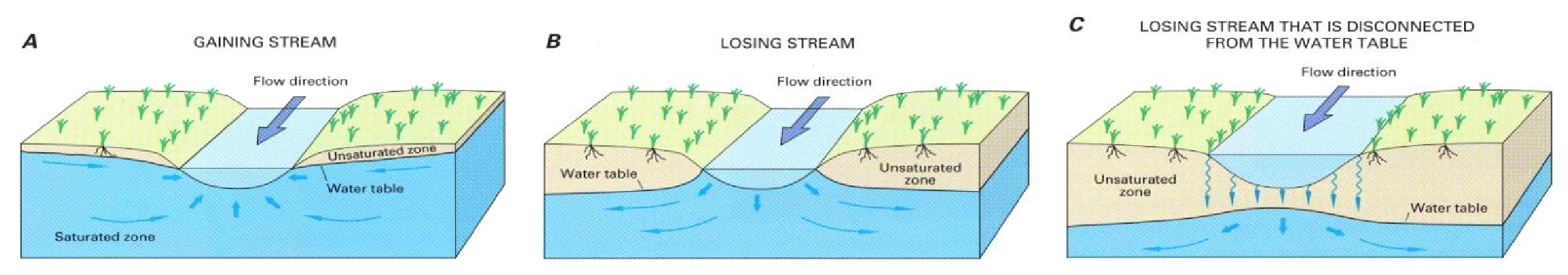 Figure 4: (A) Gaining streams receive water from the groundwater system. (B) Losing streams lose or add water to the groundwater system. (C) Disconnected streams are separated from the groundwater system by an unsaturated zone.